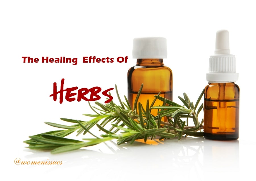 The healing effects of herbs